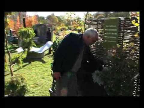Les conseils de pierre alexandre risser les jardins de pots youtube - Pierre alexandre risser ...