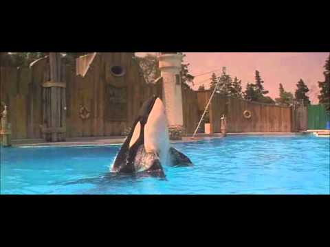 free willy best scene