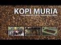 KOPI MURIA (Film Dokumenter)