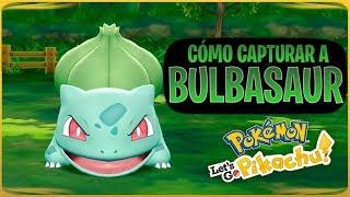 TRUCO Pokemon Lets Go Pikachu & Eevee - Como capturar a Bulbasaur