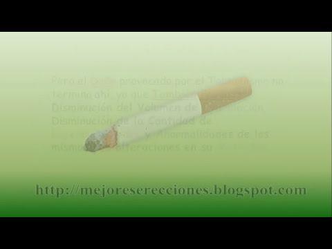 Perdida De Ereccion Por Fumar Tabaco - Como Mejorar Tus Erecciones - http://tinyurl.com/lpz3f6k
