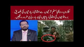 Burma Army is Doing Group Sex With Thousand Of Rohingya Muslims Girls, Aamir Liaquat Exposed All Doc