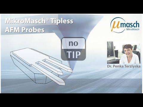 <h3>MikroMasch HQ Line Product Screencast on Tipless Series<br /></h3> Presented by Dr. Penka Terziyska <br />Product Manager