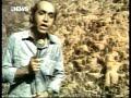 Jornal Nacional: Garimpo Em Serra Pelada (jul/1982)
