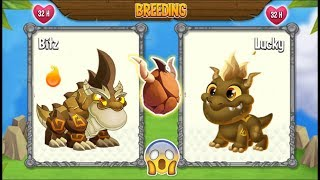 NEW BREEDING: Double Terra Dragon & New Terra Dragon   DRAGON CITY 😍