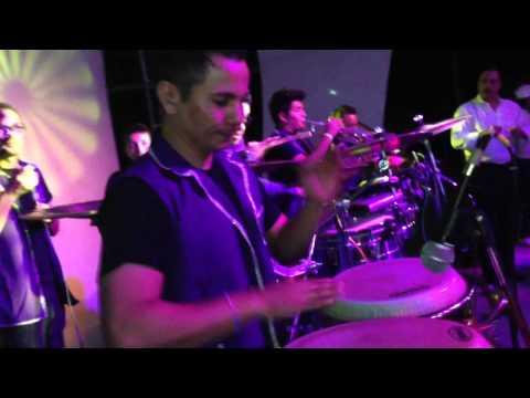 Palomazo chuyito con el orkeston loko