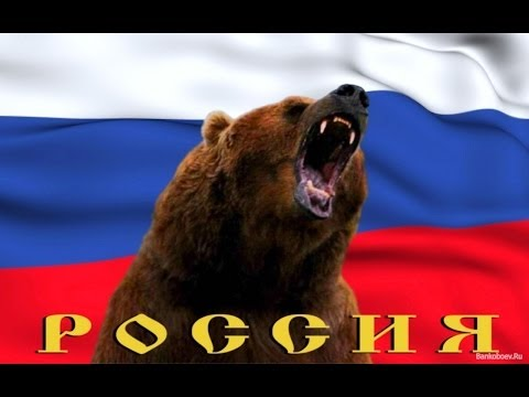 обои на рабочий стол русский медведь на фоне флага № 174746 бесплатно