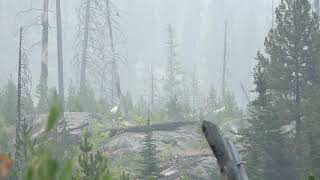 Hunting In Idaho With A Bull Then Wolves Watch A Wolf Howling