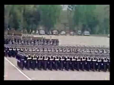 Escuela de Especialidades de la FACH, Gran Parada Militar 1986