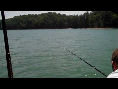 Record Large Mouth Bass on Lake Allatoona