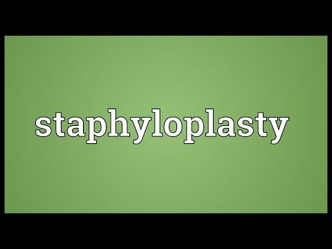 Header of staphyloplasty
