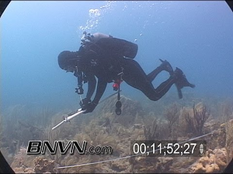 6/24/2007 Coral Reef Monitoring and Research Video
