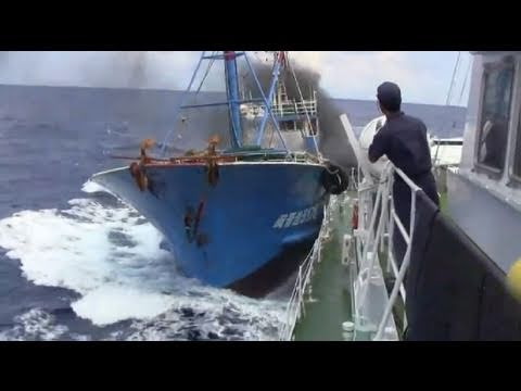 尖閣に来てる中国の漁船って一体何しに来てる?