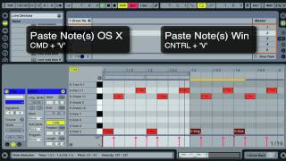 Ableton Live Tutorials