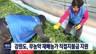 강원도, 무농약재배농가 직접지불금 지원