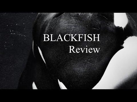 Blackfish - Review