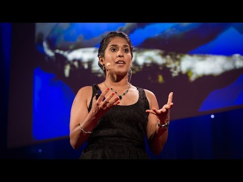 Asha de Vos: Why you should care about whale poo