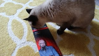 My Cats Review: Jackson Galaxy's Ground Prey Wand!