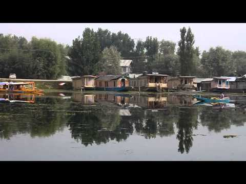 Serene morning on Lake Dal, Srinagar, Kashmir