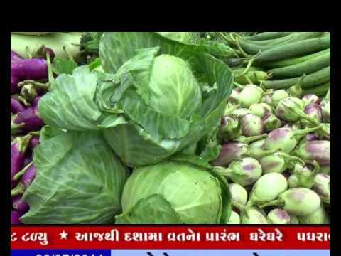 25-07-2014,ivn24news,news,sakbhaji,vegitable,lion,zoo,hispital
