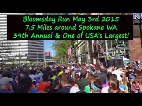 Bloomsday knoxville 2013