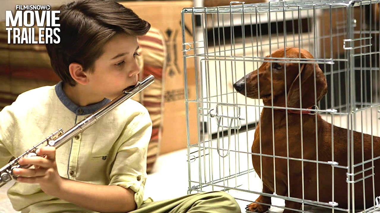 Wiener-Dog Trailer: Greta Gerwig Welcomes You to the Doghouse