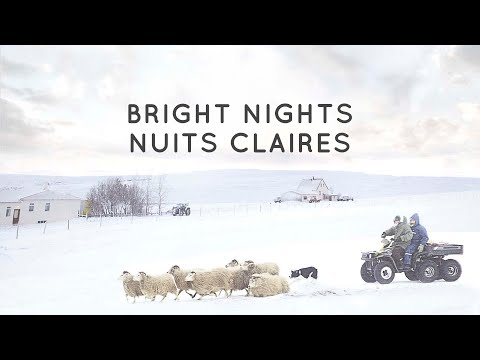 Official Trailer - Bright Nights: The 6th Baltic-Nordic Film Festival