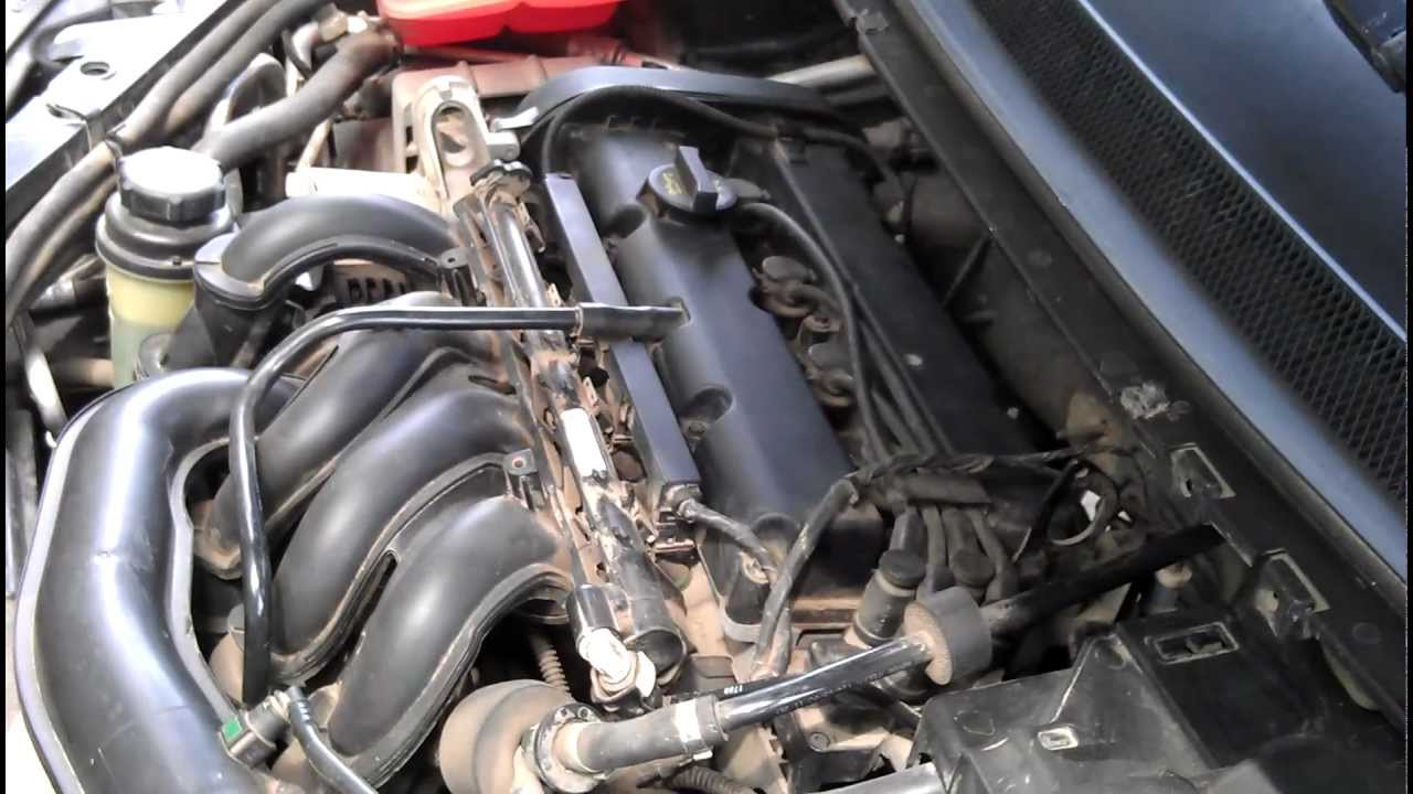 Форд фокус фото двигателя