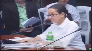 #Balikbayan Boxes Committee on Ways and Means #Grace #Poe Part 1