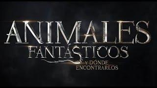 Animales Fantásticos y Dónde Encontrarlos (nueva película HARRY POTTER) - 9 Criaturas Mágicas