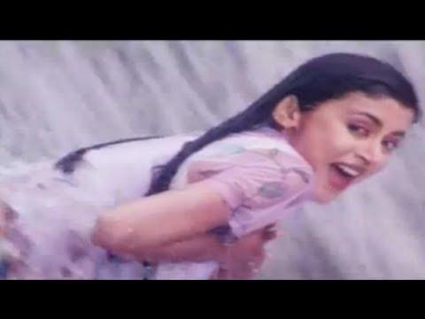 Kaun Hai Woh - Hogi Pyar Ki Jeet - Ajay Devgan & Neha - Full...