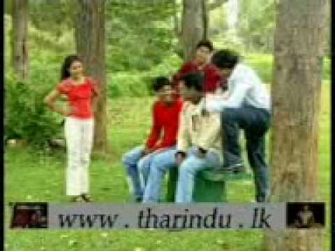 Mata Thahanam Mal.3gp video