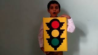 Kids fancy dress competition: Traffic signal theme