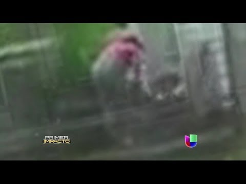 Brutal golpiza de una mujer a un bebé captada en video