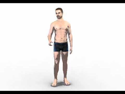 Nude male 3d model by Rocketbox Libraries #m021 talk
