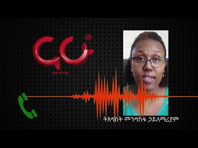 Ethiopia: Interview with Mengistu Haile Mariam Daughter