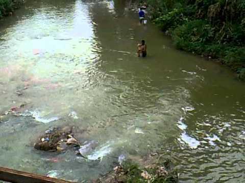 malaysia river fishing