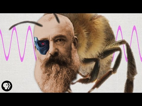 Claude Monet Was Half Honeybee