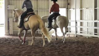 "CNY Reining Horse Assoc. ""Ride and Slide""(part2)"