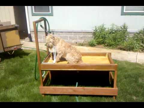 Dog wash station 1 first use youtube for Diy dog bathing system