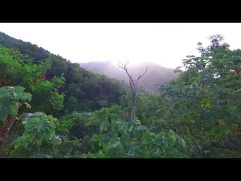 Drone Flight 4k over Mount St Benedict , Trinidad