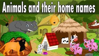 Animals and their home names for kids | Kid2teentv