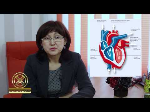 Влияние аргинина на сердечно сосудистую систему