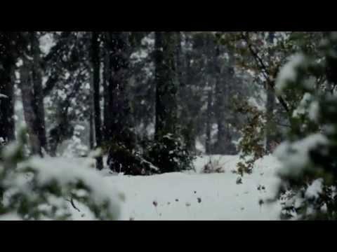 Guillamino - Fang fosc (videoclip)