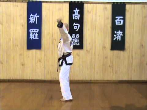 Tang Soo Do - Single Step Drill - Sequence 5 Image 1