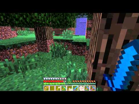 Minecraft with Caelhar Gaming - Survival Episode 23: Overwhelmed With Iron