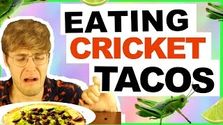EATING CRICKET TACOS!