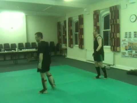 stroke the lute sanshou with jow part 2.MOV Image 1
