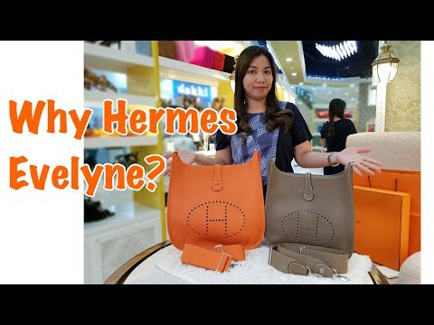 Hermes Evelyne Comparison and Unboxing 2018 GM Vs PM