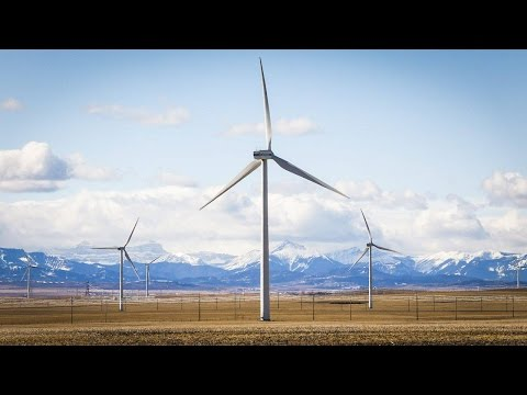 Wind farms attract attention as Canada looks to renewable energy